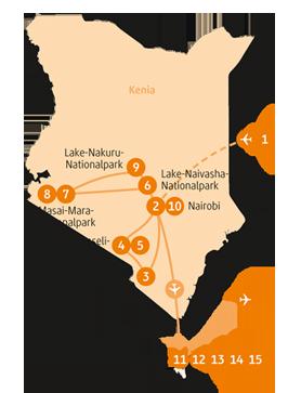 Private-Reisen_Kenia und Tansania_Zebra