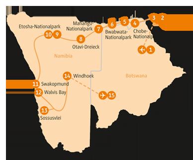 Private-Reisen mit 4 bis 6 Personen_Namibia und Botswana_Buffalo