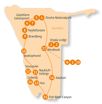 Private-Reisen mit 4 bis 6 Teilnehmer_Namibia_Oryx