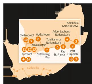 Private-Reisen mit 4 bis 6 Teilnehmer_Südafrika_Elephant