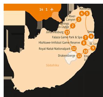 Private-Reisen mit 4 bis 6 Teilnehmer_Südafrika_Lion