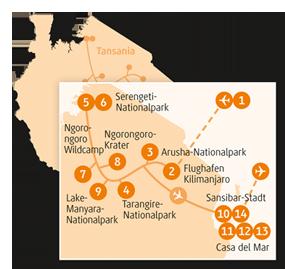 Private-Reisen mit 4 bis 6 Teilnehmer_Tansania_Cheetah