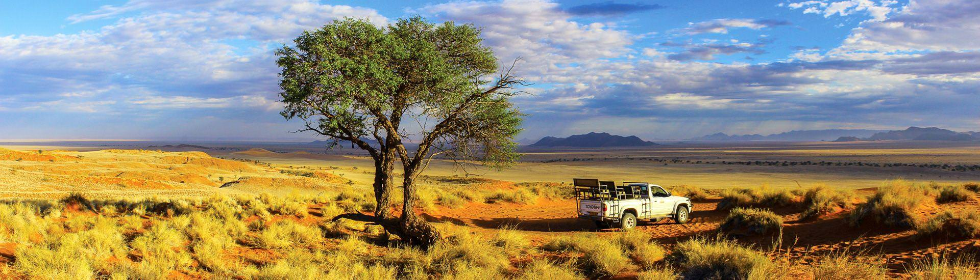 Safari im Gebiet der Namib Desert Lodge (� Gondwana Collection Namibia / Cham�leon)