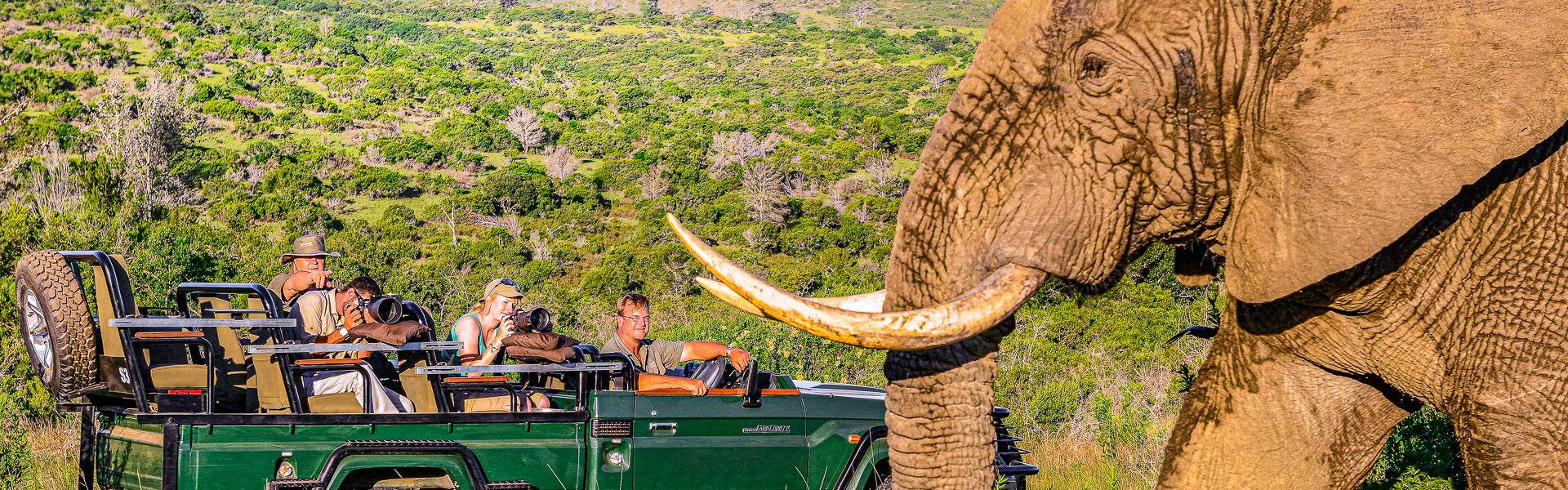 Südafrika und Eswatini Krüger Afrika Erlebnis-Reisen